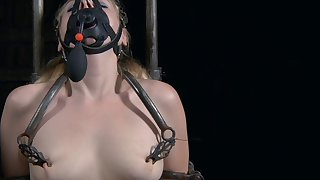 Routh anguish session in the BDSM dungeon with Delirious Hunter